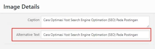 Cara Optimasi Yoast Search Engine Optimation (SEO) Pada Postingan